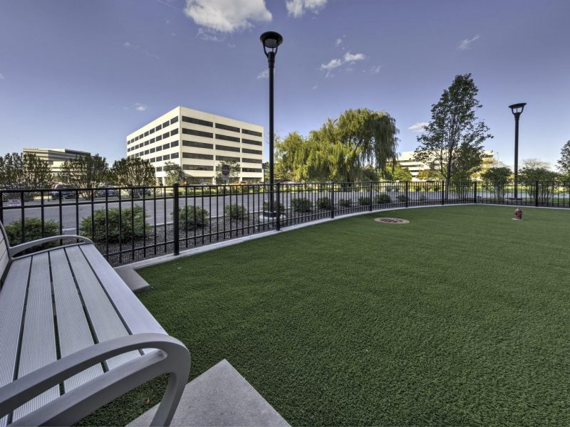 For those pet lovers, the TGM NorthShore Apartment is also offering a spacious Bark Park for your pet to engage during playtime, featuring a pet-friendly environment and peaceful place to stay.