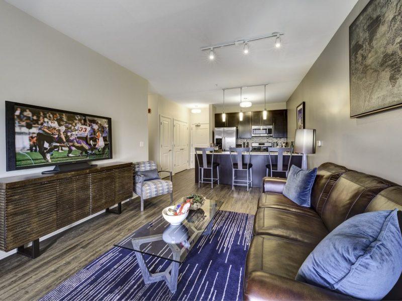 TGM NorthShore Apartments Living Room 2